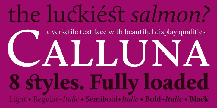 Calluna - a text typeface with flow