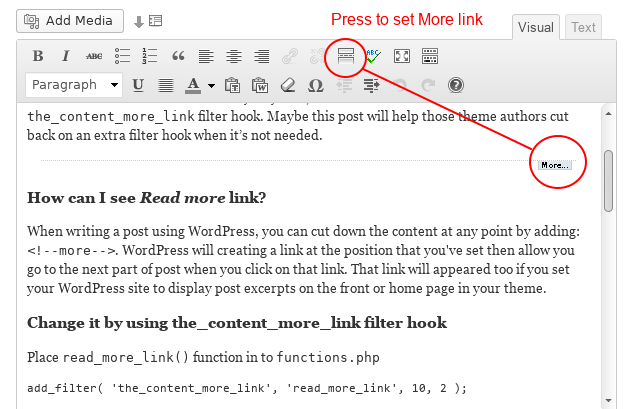 Customizing the WordPress Read More link