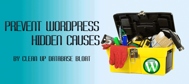 Prevent Hidden Causes by Clean up WordPress Database Bloat Issues