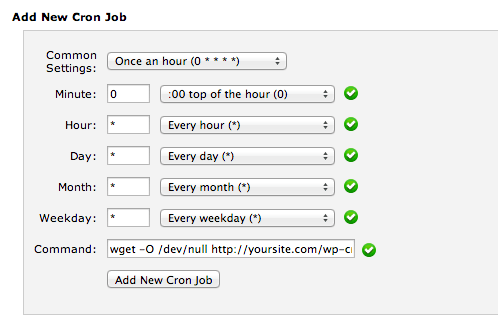 CPanel Cron Job Settings