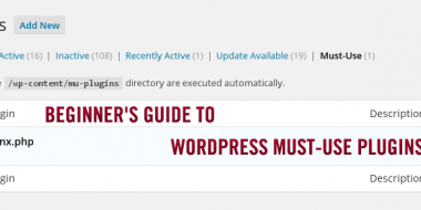 Beginner's Guide to WordPress Must-Use & Drop Ins plugins
