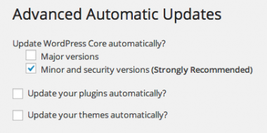 WordPress Automatic Update – How do I config & control it?