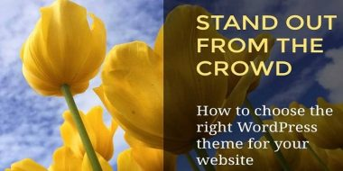 Tips to make your Stand-Out WordPress Website