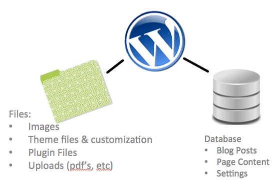 WordPress Database Relation