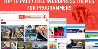 Top 10 Paid/Free Programmers WordPress Themes