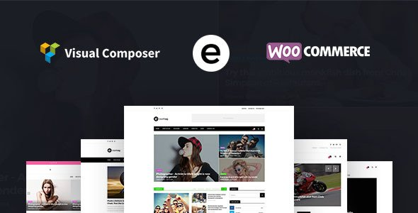 Multiconcept Blog Magazine WordPress Theme