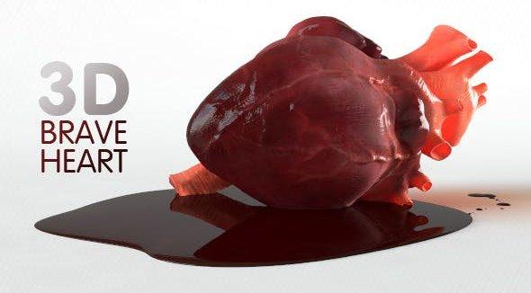 Brave Heart (3D model of human heart)