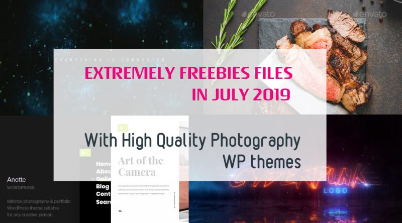 Extremely FREEBIES Files in July 2019 with High Quality Photography WP Themes