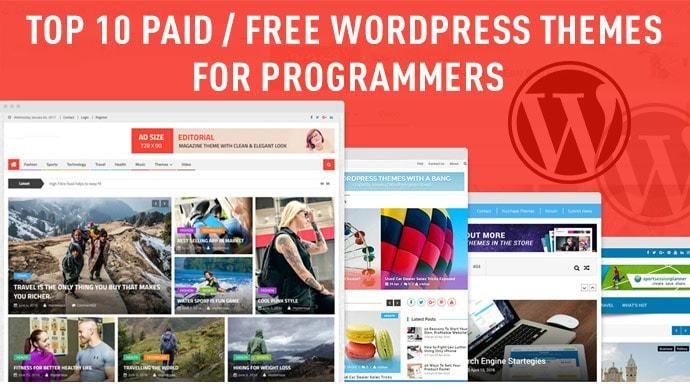 Top 10 Paid/Free WordPress Themes for Programmers